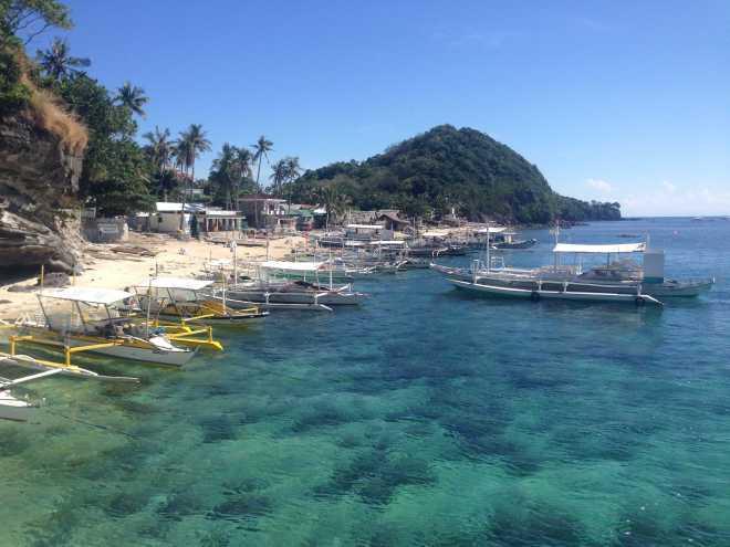 Apo Island - 2