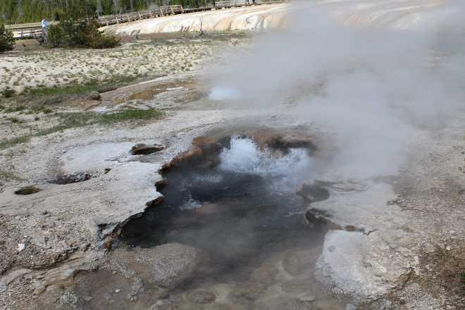 Yellowstone - 10
