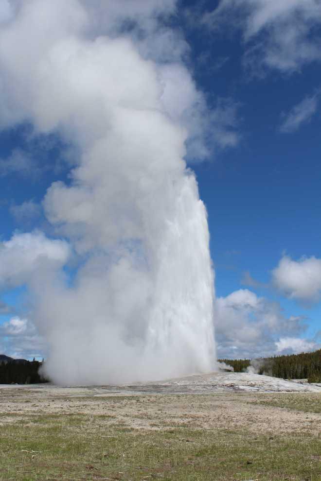 Yellowstone - 8