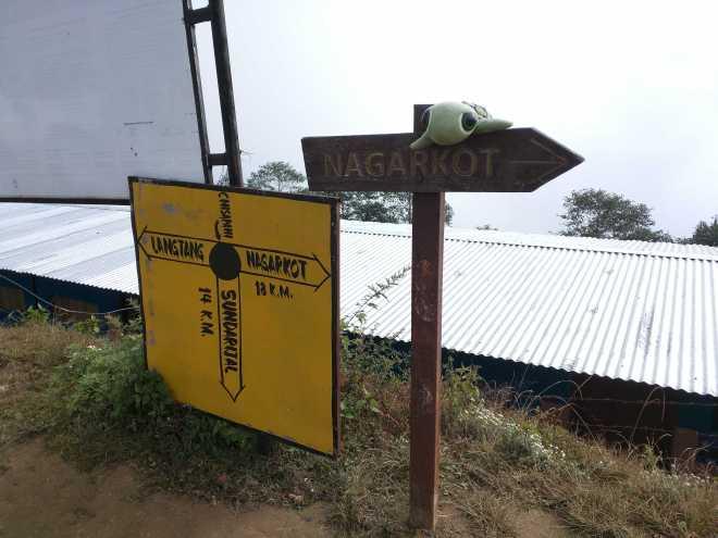 Kathmandu Trek 2 - 1