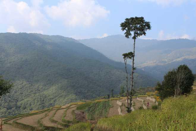 Kathmandu Trek 1 - 7