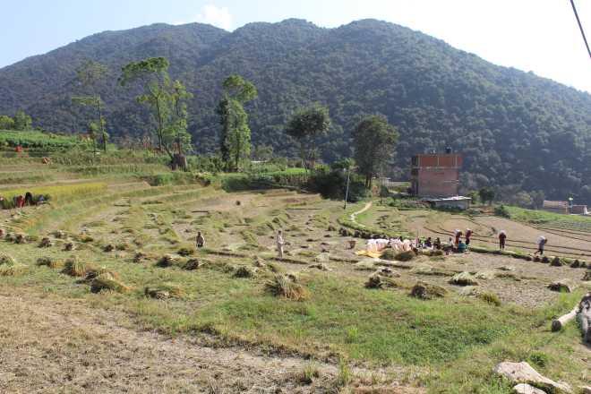 Kathmandu Trek 3 - 8