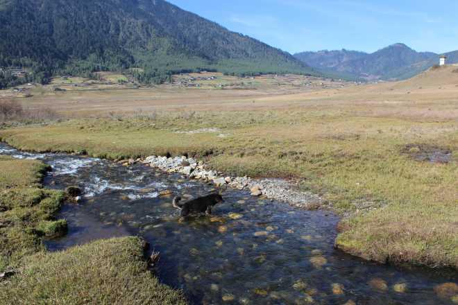 Bhutan, Nov 22 - 10
