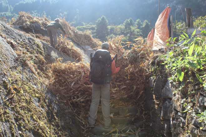 Annapurna 3 - 11