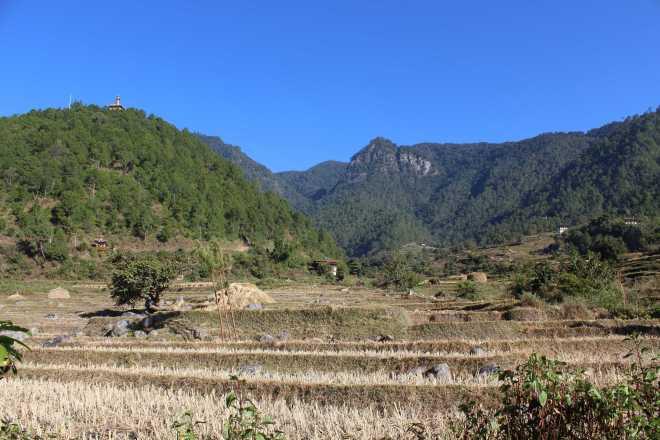 Bhutan, Nov 23 - 1