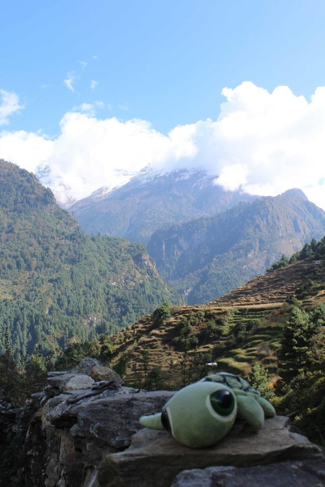 Annapurna 3 - 12