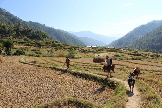 Bhutan, Nov 23 - 12
