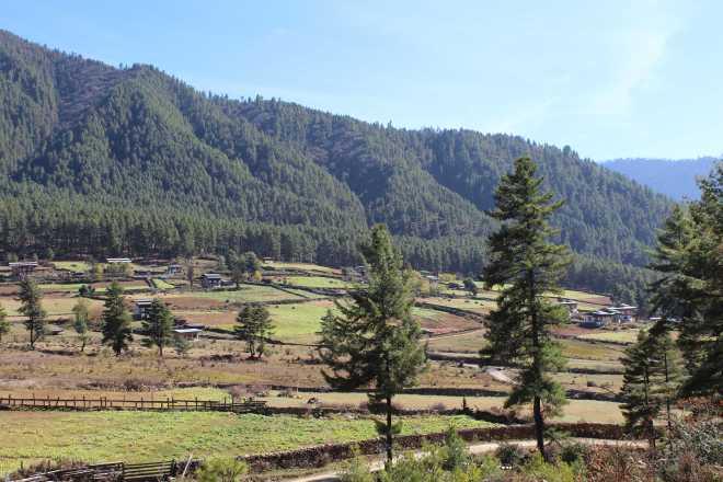 Bhutan, Nov 22 - 14