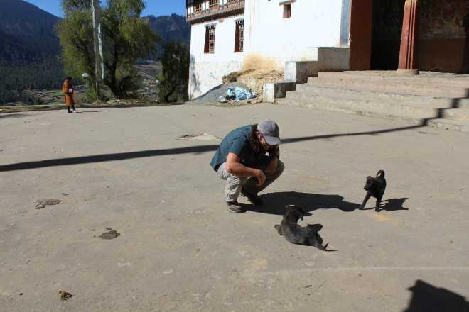 Bhutan, Nov 22 - 18