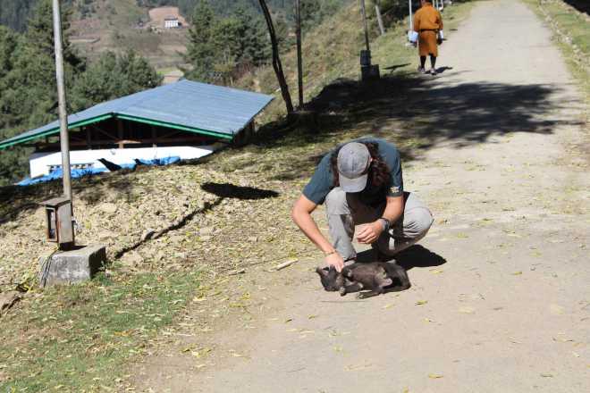 Bhutan, Nov 22 - 20