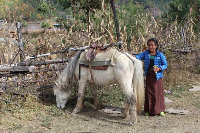 Bhutan, Nov 27 - 21