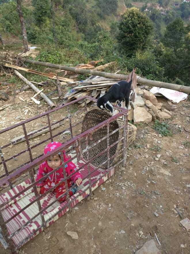 Pokhara - 33