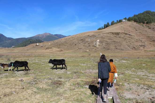 Bhutan, Nov 22 - 9