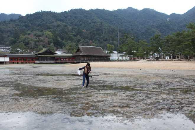 Itsukushima - 18