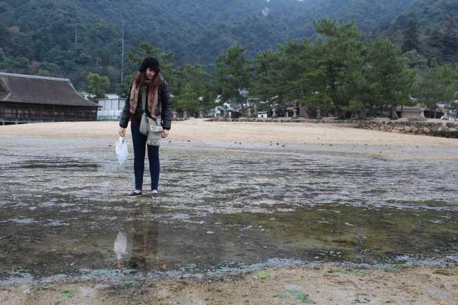 Itsukushima - 19