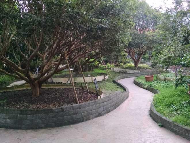 Taiwan 1, Nantou - 30