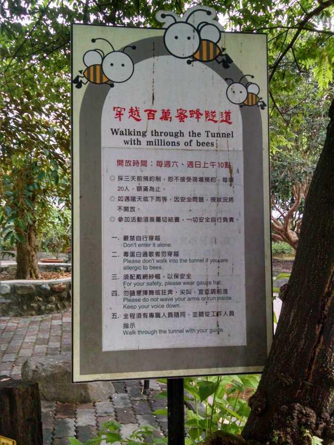 Taiwan 1, Nantou - 31
