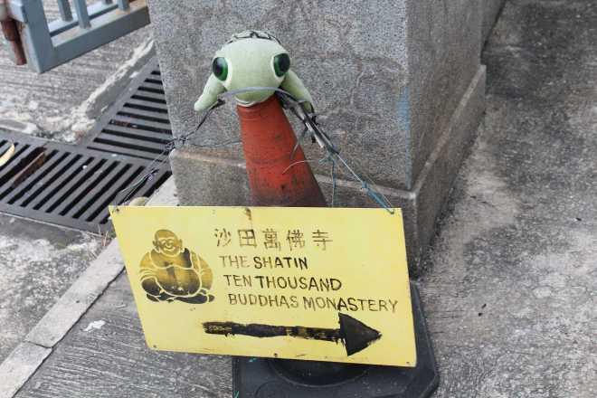 Hong Kong - 43