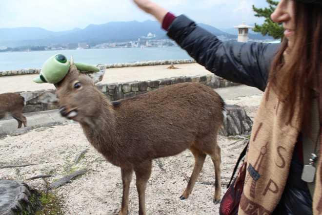 Itsukushima - 5