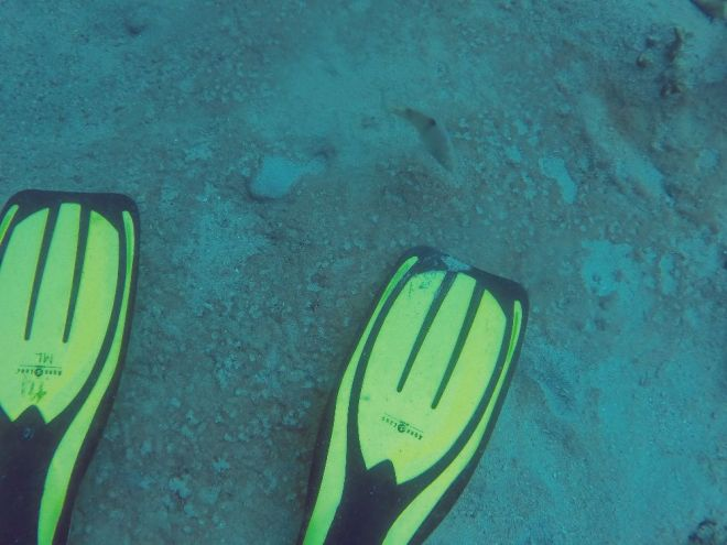 Coron, Shipwreck Diving – 13