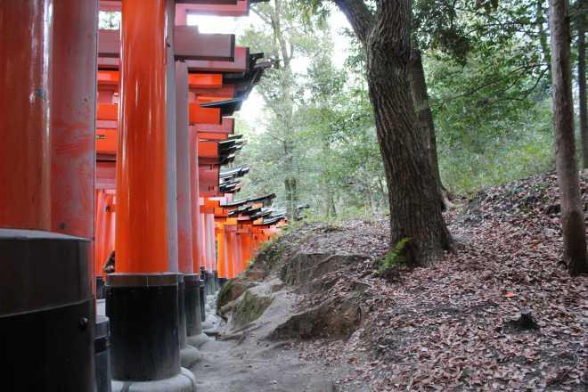 Kyoto, Part 2, Fushimi-inari tashi - 13