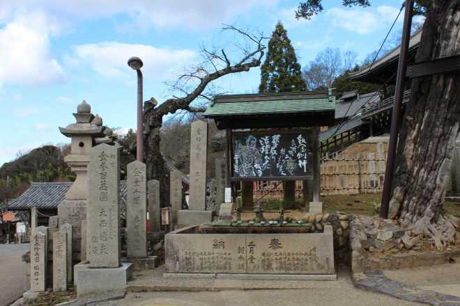 Kyoto, Part 2, Nara - 14