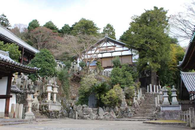 Kyoto, Part 2, Nara - 15