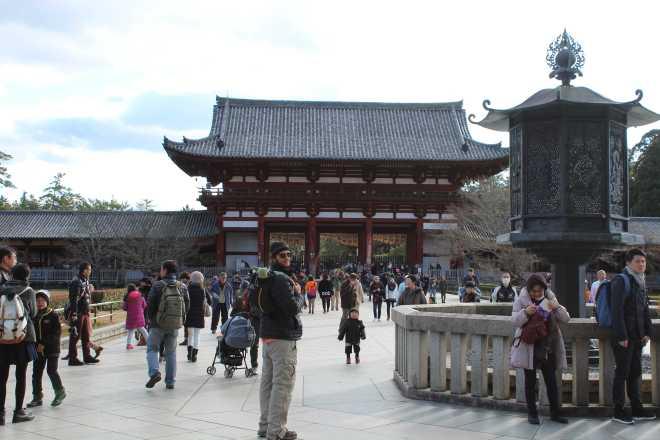 Kyoto, Part 2, Nara - 29