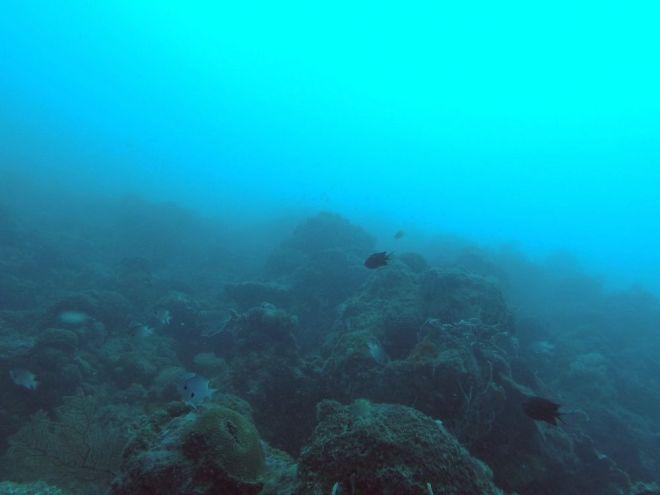 Coron, Shipwreck Diving – 3