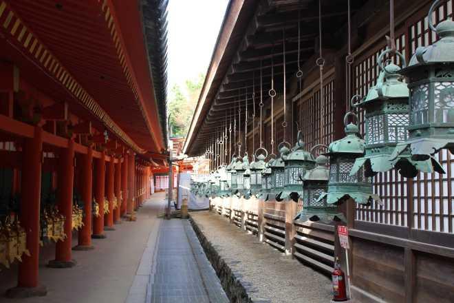 Kyoto, Part 2, Nara - 8