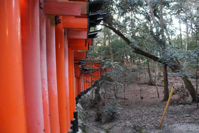 Kyoto, Part 2, Fushimi-inari tashi - 8