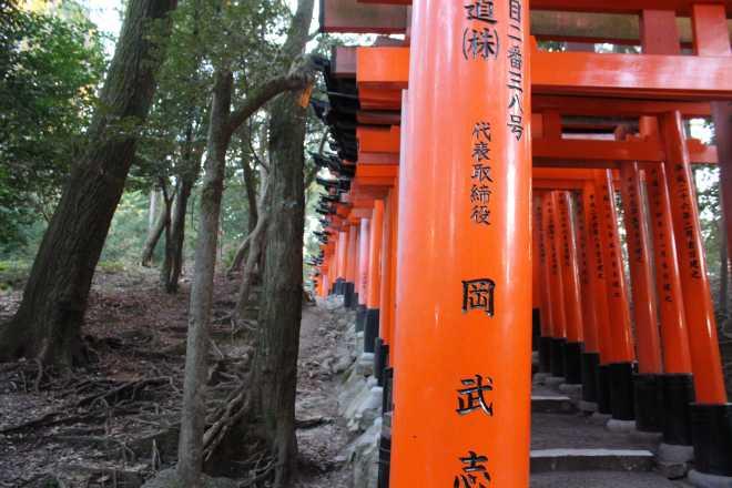 Kyoto, Part 2, Fushimi-inari tashi - 9