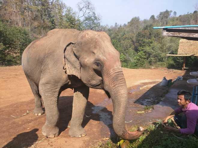 Chiang Mai - 10