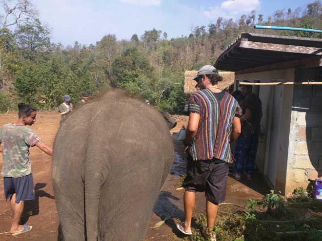 Chiang Mai - 11