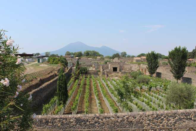Pompeii - 12