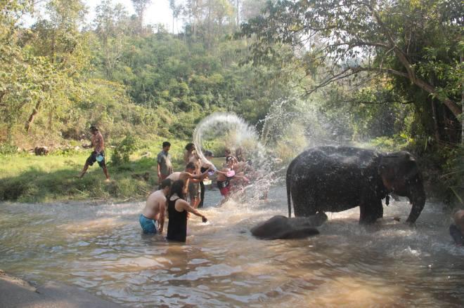 Chiang Mai - 23