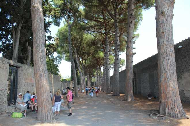 Pompeii - 7