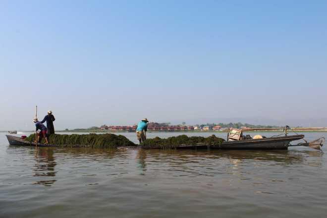 Nyaungshwe, Boat Trip - 17
