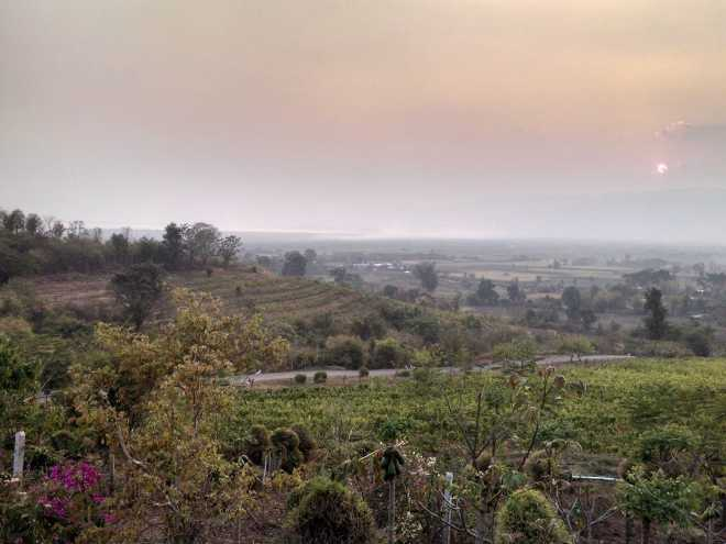 Nyaungshwe, Winery - 3