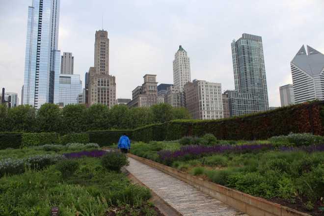 Chicago - 9