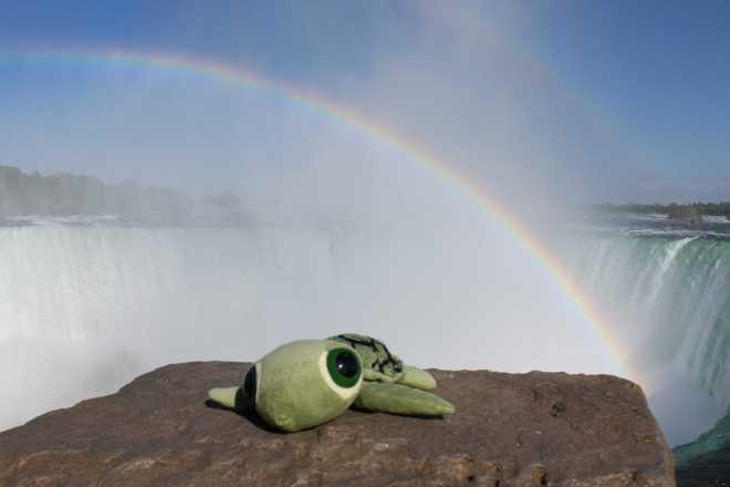 Niagara Falls, ON - 9