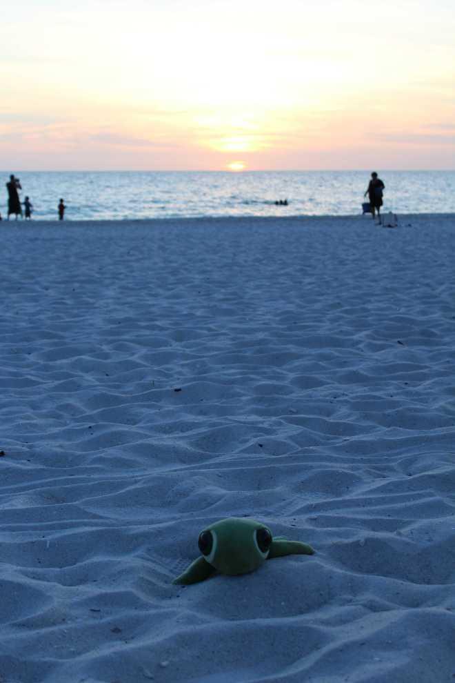 Naples, Florida - 3