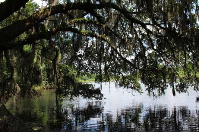 Gainesville - 5