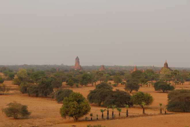 Bagan, Day 2 - 42