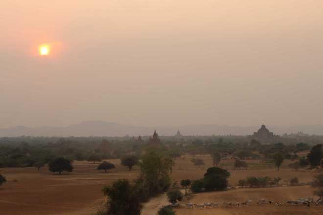 Bagan, Day 2 - 46