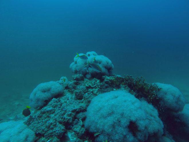 Andaman Sea, Ko Lanta - 10