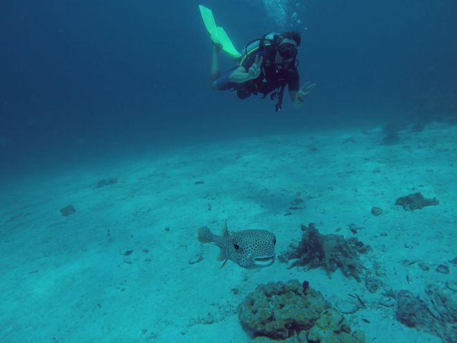 Andaman Sea, Ko Lanta - 13