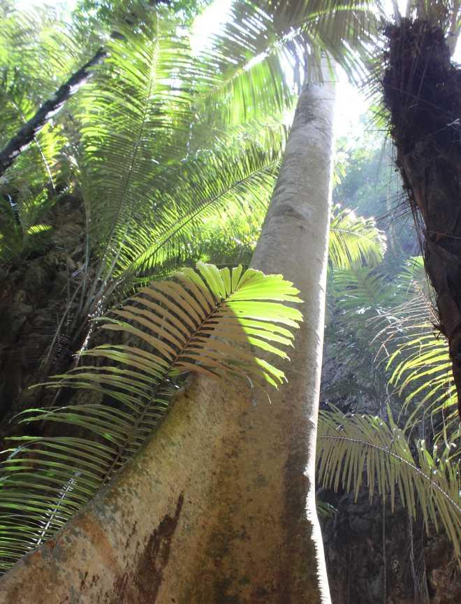 Andaman Sea, Railay Beach - 24