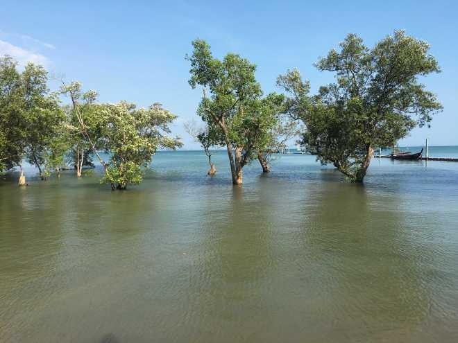 Andaman Sea, Railay Beach - 57